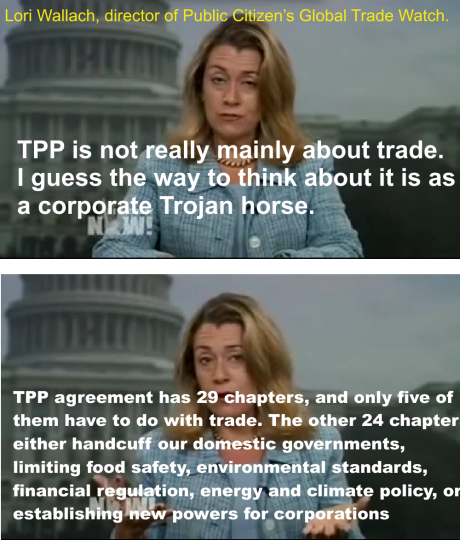 TPP 13