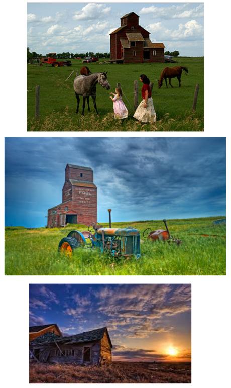 Prairies 1